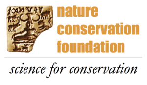 NCF logo transparent